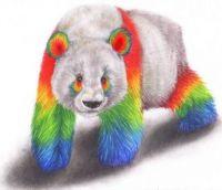 Rainbow Pride Panda <3