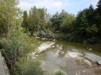 DSC00176  Bormida River, Italy