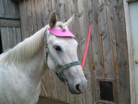 Gracie's Pink Hat