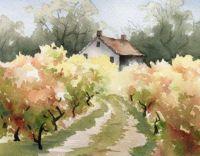 Vineyard House