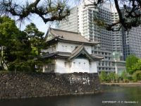 JAPAN - Tokyo – Imperial Palace and Chiyoda District - Modernism and Tradition