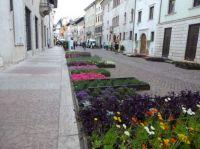 Flower exhibition in Trient, Italy