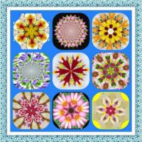 All Made From Flowers Kaleido. Smaller.