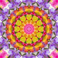 kaleidoscope 342 colours small