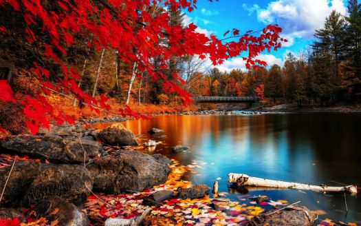 Lake's Beauty in Autumn