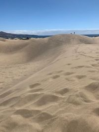 Natural Dune Reserve of Maspalomas