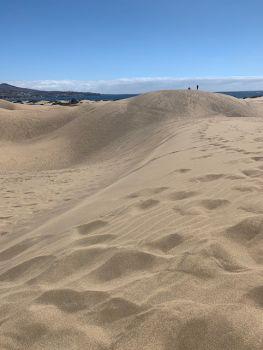 Natural Dune Reserve of Maspalomas