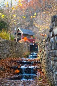 a true autumn day  6045