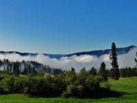 Fog over Kamiah Valley
