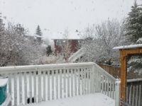 Snow in April 2019