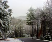 Snow in Blue Ridge Mountains