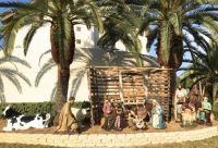 Scene of the Nativity. St-Armand Circle, Sarasota Fl. taken Dec 20. 2016