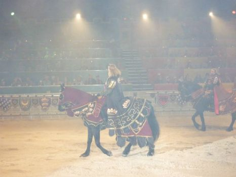 Medieval Times - the king - spotlights and strobes made for terrible photo quality, sorry.