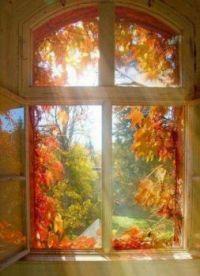 Okno do podzimu 22.9.2021_Window to autumn 22.9.2021