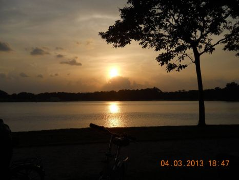 Cycling Around Singapore - Bedok Reservoir Park