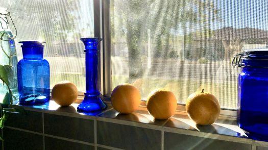 kitchen window 2020