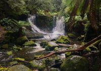 Horshoe Falls: Mt Field National Park 9 June 2021