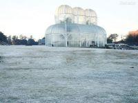Curitiba - Botanical Garden