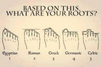 what are your roots