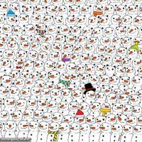 Puzzle challenge 4    Spot the panda