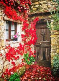 Wooden Door Entrance