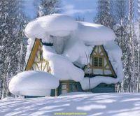 WinterWonderHouse