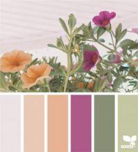5_21_Color_Spring