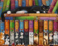 """Cat Bookshelf""-Randal Spangler"