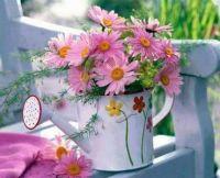 virág (2)