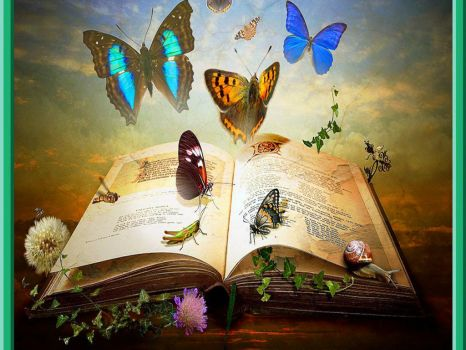 magical book of butterflies and insects