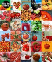 Tomatoes!!!
