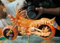 miniature lobster shell motorcycle, #2