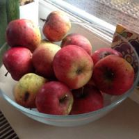 Appels voor Sint Maarten