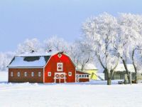 Red Barn on the Winter Farm....