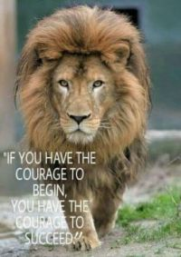 lion courage to begin