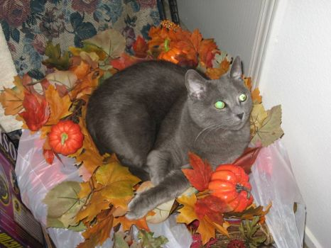 Duchess celebrates Autumn
