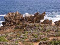 Karst rock form Fotheringate Flinders Island Tasmania