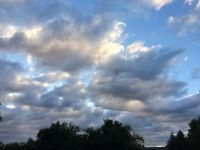 calico clouds--challenging