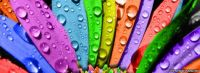 colorful_rainbow_flower