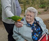 Mum and Parrot