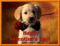 Happy Valentine's Day !!!