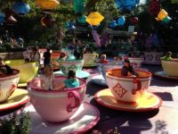 Mad Hatter Teacup Ride