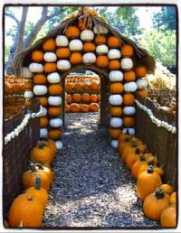 Entrance to the Pumpkin Patch