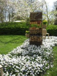 Keukenhof Gardens Apr 2015