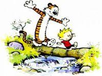 Calvin and Hobbes-calvin