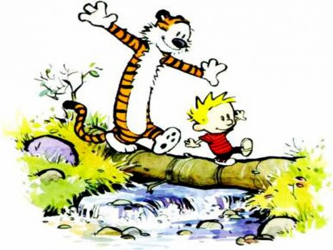 Calvin and Hobbes-calvin