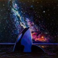 The Galactic Orca