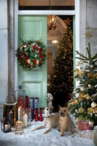 Doggies and decorations