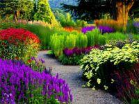 Amazing gardens (10)