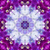 kaleidoscope 387 purple and white small